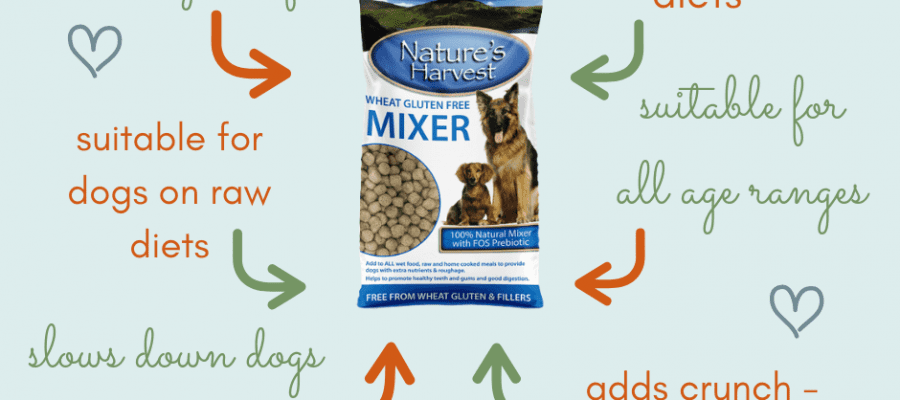 an infographic showing the benefits of Nature's Harvest Wheat Gluten Free Mixer
