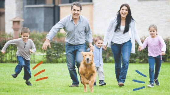 Family Fun with Your Dog 1