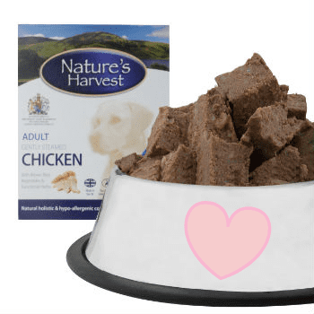 Chicken and Brown Rice Adult Dog Food - 10 Pack 4