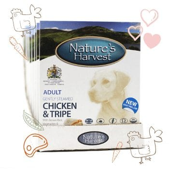 Chicken, Tripe & Brown Rice Adult Dog Food - 10 Pack 1