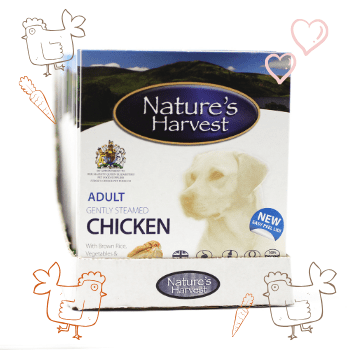 Chicken and Brown Rice Adult Dog Food - 10 Pack 1
