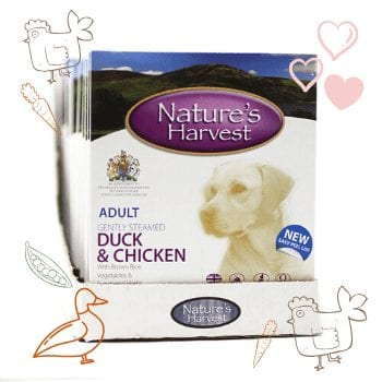 Duck, Chicken & Brown Rice Adult Dog Food - 10 Pack 1