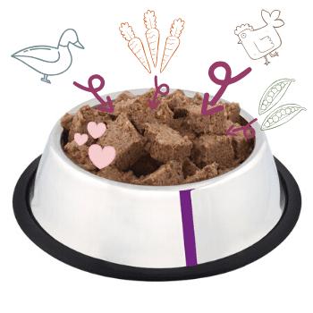 Duck, Chicken & Brown Rice Adult Dog Food 2
