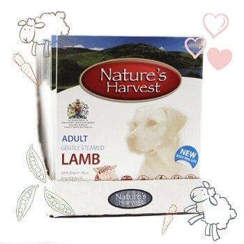 Lamb & Brown Rice Adult Dog Food - 10 Pack 1