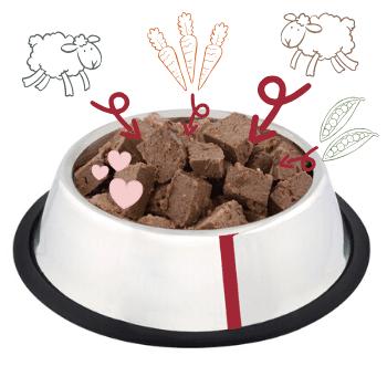 Lamb & Brown Rice Adult Dog Food - 10 Pack 2