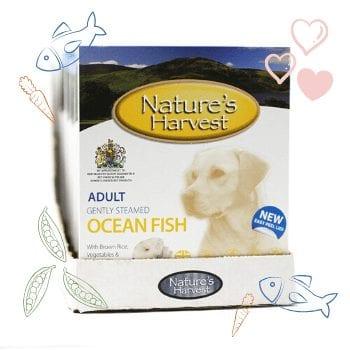 Ocean Fish & Brown Rice Adult Dog Food - 10 Pack 1