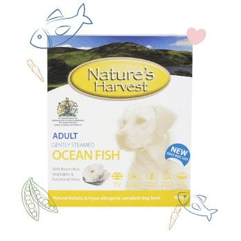 Ocean Fish & Brown Rice Adult Dog Food 1