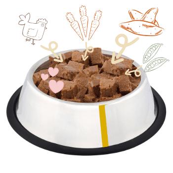 Grain Free Elite Chicken & Sweet Potato Adult Dog Food 2