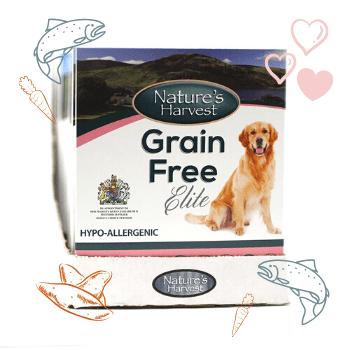 Grain Free Elite Salmon & Sweet Potato Adult Dog Food 10 pack 1