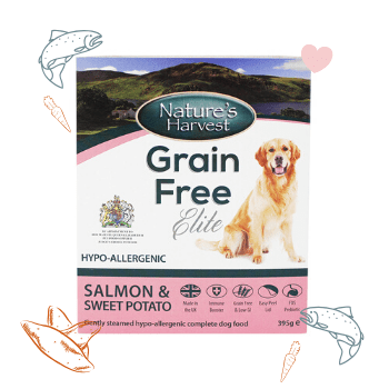 Grain Free Elite Salmon & Sweet Potato Adult Dog Food 1