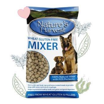 Wheat Gluten Free Mixer 10kg 1