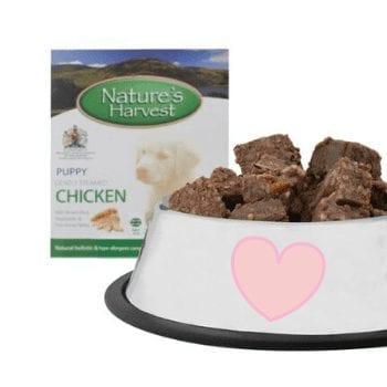 Puppy Chicken & Brown Rice Dog Food - 10 Pack 2