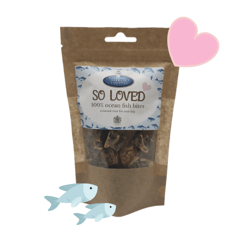SO LOVED 100% Ocean Fish Grain Free & Hypoallergenic Bites 1
