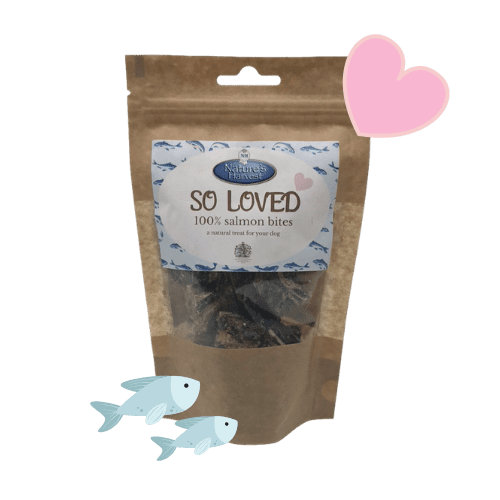 SO LOVED 100% Salmon Grain Free & Hypoallergenic Bites 1