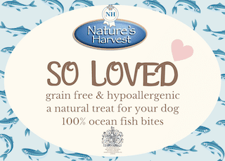 SO LOVED 100% Ocean Fish Grain Free & Hypoallergenic Bites 2
