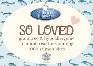 SO LOVED 100% Salmon Grain Free & Hypoallergenic Bites 2