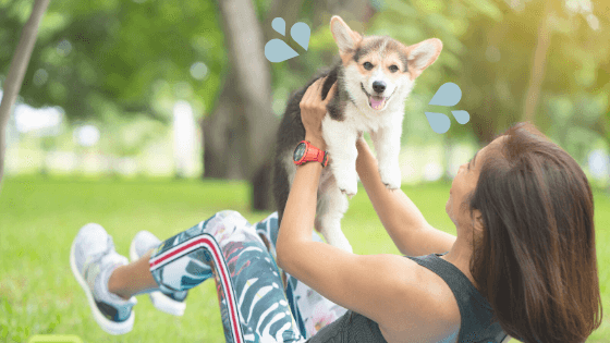 Exercise and Fitness training with your dog! 3