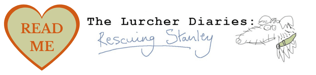 Lurcher (1)